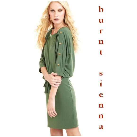 b4d416c0b6f SANDRA DARREN Burnt Sienna Dolman Sleeve Dress A9.  M 5a417cf78af1c51e53039114